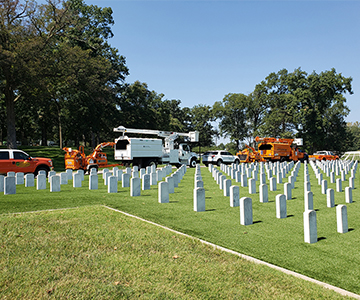 Cuivre Employees trimming trees at Jefferson Barracks National Cemetery