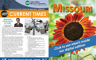 The March 2021 Issue of Rural Missouri/Current Times is now available!
